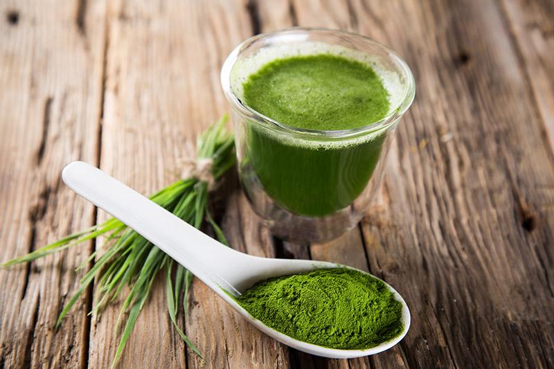 công dụng của tảo xoắn với sức khỏe